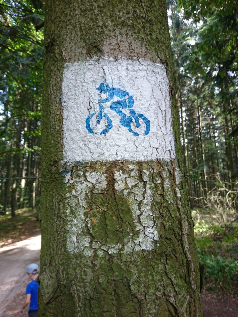 Niestandardowe oznakowanie szlaku rowerowego