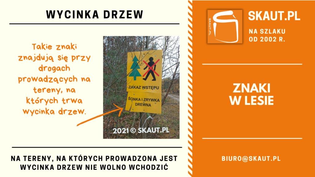 Znaki w lesie - ścinka i zrywka drewna