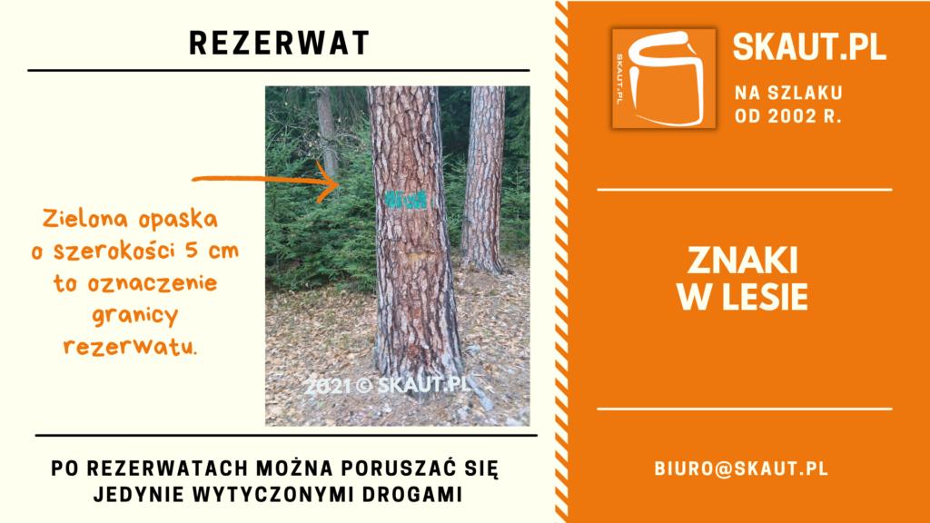 Znak namalowany na drzewie - zielony pas - rezerwat
